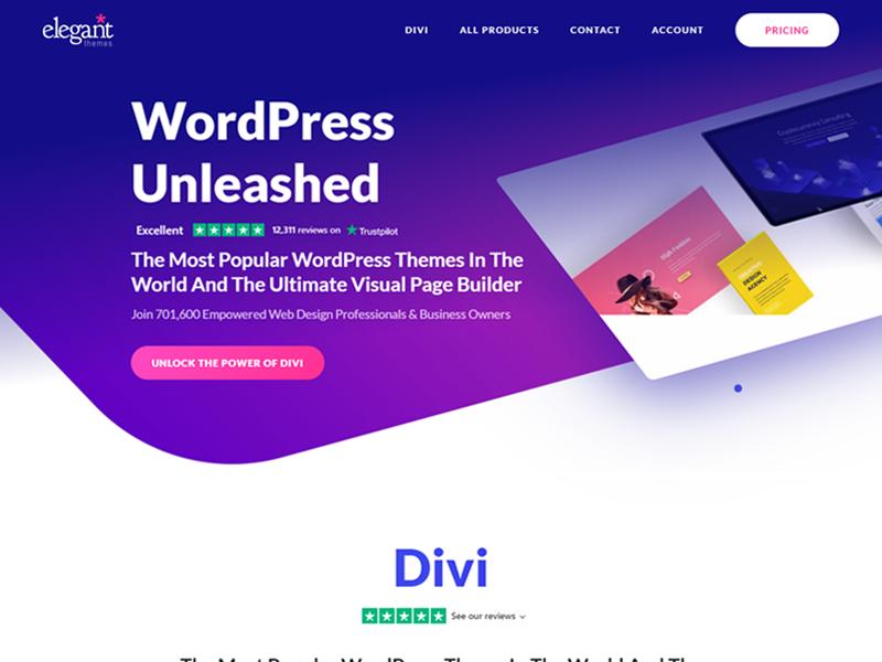 Divi: Easiest WordPress Theme to Customize