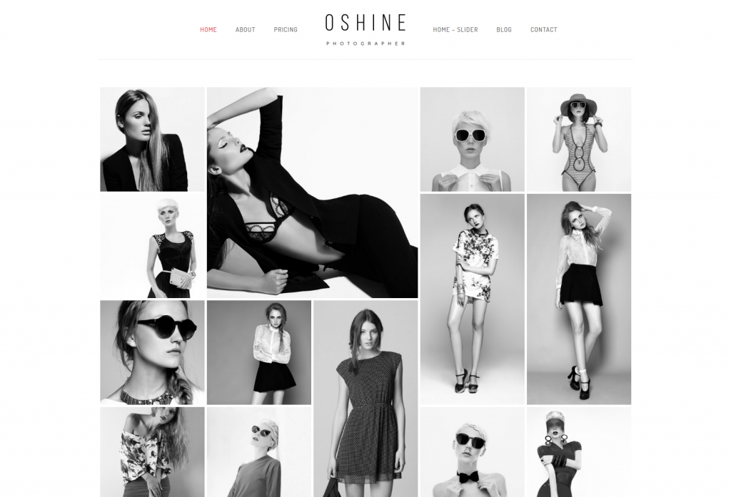 Oshine – Grayscale – Oshine – Best Portfolio Photography WordPress theme