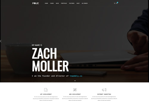 Folie Freelancer WordPress Theme