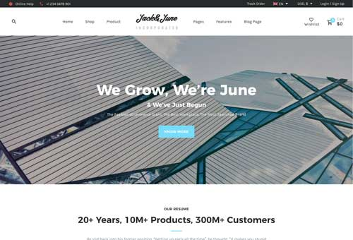 June Business WordPress Theme