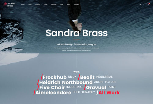 June Freelance WordPress Theme