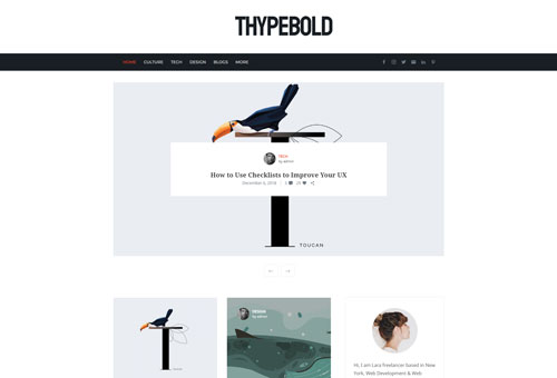 Thype Blog Alternative WordPress Theme