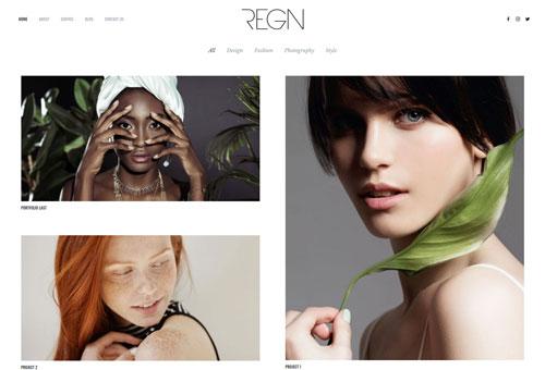 Regn Portfolio WordPress Theme