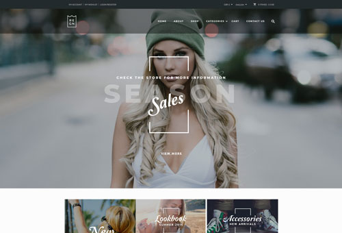 Regn Store WordPress Theme