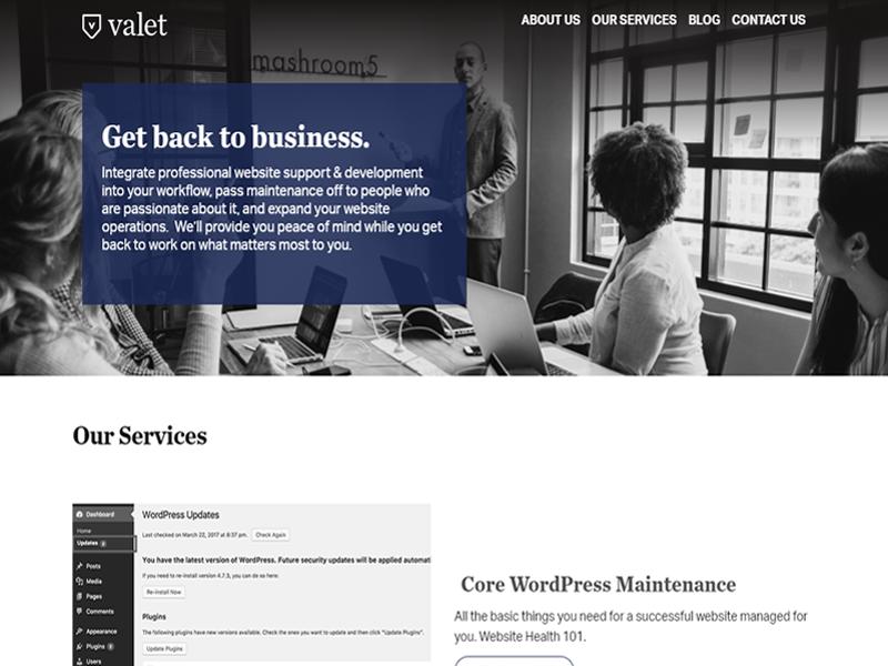 Valet wordpress website maintenance