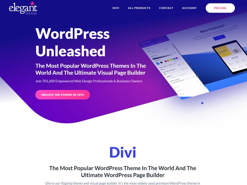 Divi theme: WordPress Portfolio Themes