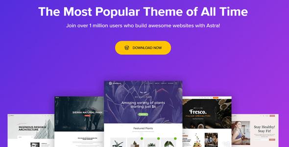 Most Popular WordPress Theme