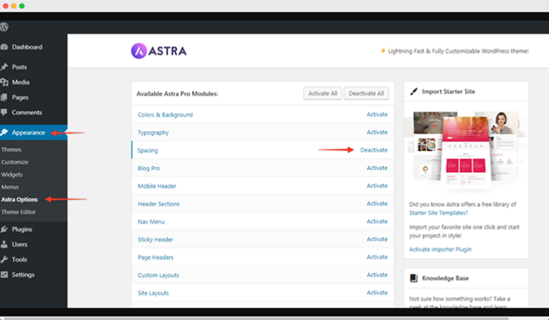 Astra theme options