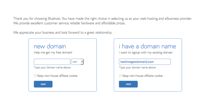 Configuring Bluehost with WordPress: new domain