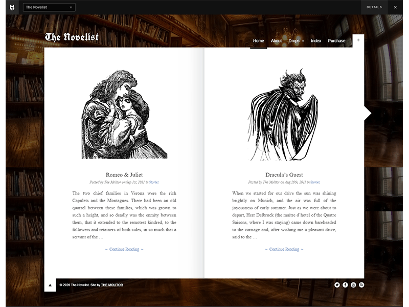 The-Novelist best wordpress themes  for writers